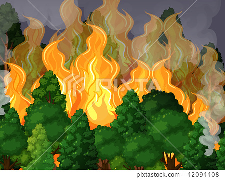 A Forest with Wildfire Disaster 42094408
