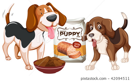 Puppy and Food on White Background 42094511