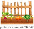 Set of different vegetables 42094642