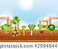 Set of different vegetable crop 42094644