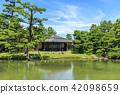 여름, 일본 정원, 연못 42098659