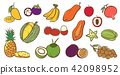 Mix tropical fruits collection, cute illustration 42098952