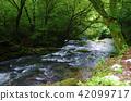 Clearstream Moss Mori River 42099717