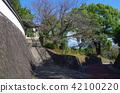 Temple Ishigaki Hill 42100220