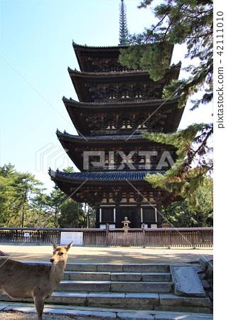 Kofukuji five-storied pagoda 42111010