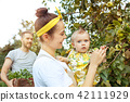 The happy young family during picking apples in a garden outdoors 42111929