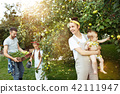The happy young family during picking apples in a garden outdoors 42111947