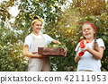 The happy young family during picking apples in a garden outdoors 42111953