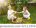 The happy young family during picking apples in a garden outdoors 42111956