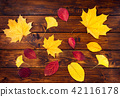 Colorful dry leaves on wooden background 42116178