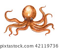 Tako watercolor illustration 42119736