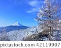 ฟูจิและโลกแห่งเงินฤดูหนาว 42119907