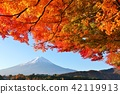 Fuji that colors autumn and autumn leaves 42119913