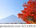 Fuji that colors autumn and autumn leaves 42119916