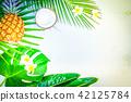 Summer flat lay scenery 42125784