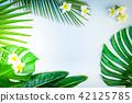 Summer flat lay scenery 42125785