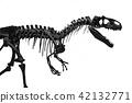 the skeleton of tyrannosaurus Rex 42132771