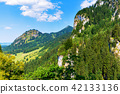 Summer landscape with mountains, hills and forest 42133136