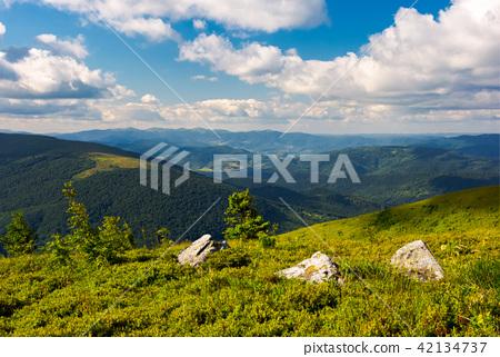 three boulders on grassy hillside 42134737