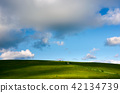 grassy hillside and gorgeous afternoon cloudscape 42134739