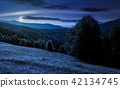 meadow on the forested hill in mountain at night 42134745
