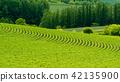 비 에이의 풍경 초여름 42135900