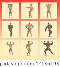 vector, bodybuilder, bodybuilding 42136193