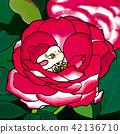 장미 꽃에 센베이를 먹어 치아 42136710