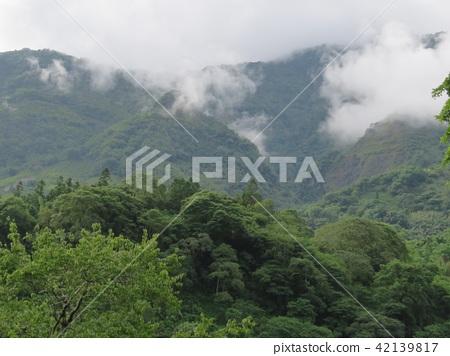 山與雲與樹 42139817