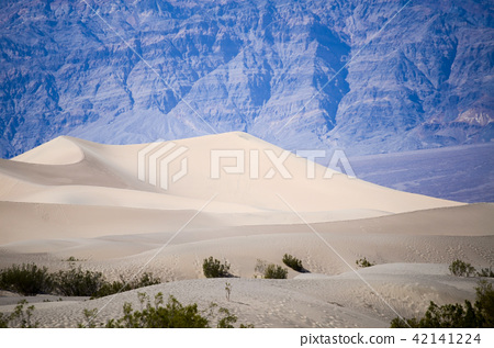 Death Valley National Park, USA 42141224