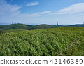 hill, landscape, scenery 42146389