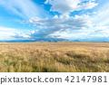 광대 한 뉴질랜드 풍경 42147981