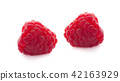 ripe raspberry isolated on white background 42163929