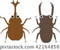 甲蟲和雄鹿甲蟲 42164856