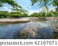 สวน,สวนสาธารณะ,พืชสีเขียว 42167071
