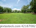 สวน,สวนสาธารณะ,พืชสีเขียว 42167082