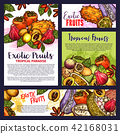 Tropical exotic fruit posters vector groceries 42168031