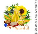 Natural oil of orgin plants and nuts vector poster 42168164