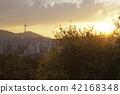 N서울타워, 남산, 도시 42168348
