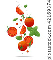 Flying fresh tomatoes and spices concept 42169374