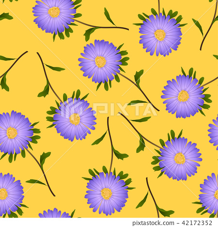Purple Aster, Daisy on Yellow Background 42172352