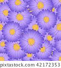无缝的 雏菊 花朵 42172353