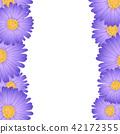 雏菊 花朵 花 42172355