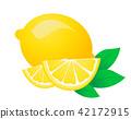Fresh lemon fruits vector illustrations 42172915