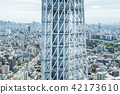city skyline view and sky tree in Tokyo, Japan 42173610