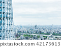 city skyline view and sky tree in Tokyo, Japan 42173613