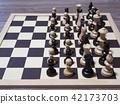 西洋棋 国际象棋 西洋象棋 42173703