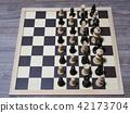 체스, 게임, 보드게임 42173704