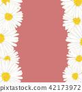 雏菊 花朵 花 42173972