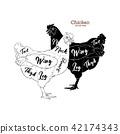 Chicken hand drawn illustration. 42174343